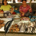 Fish market in Parangtritis